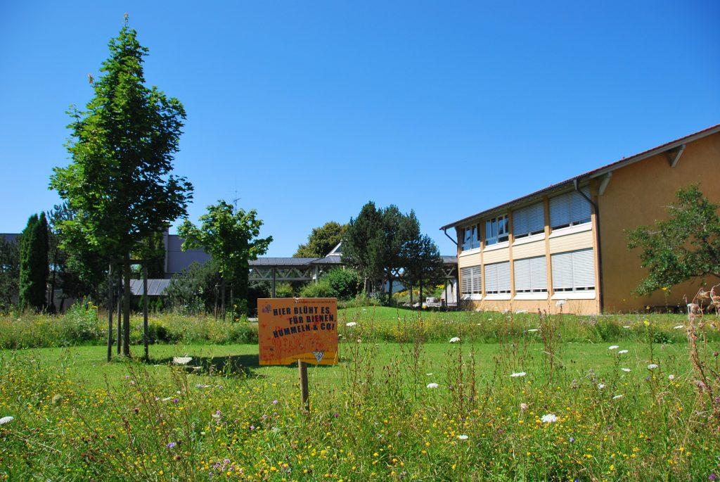 Wiesenstreifen Schule Primisweiler Foto Simone Kern